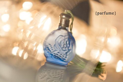 5226842913_ed7e813656_parfum